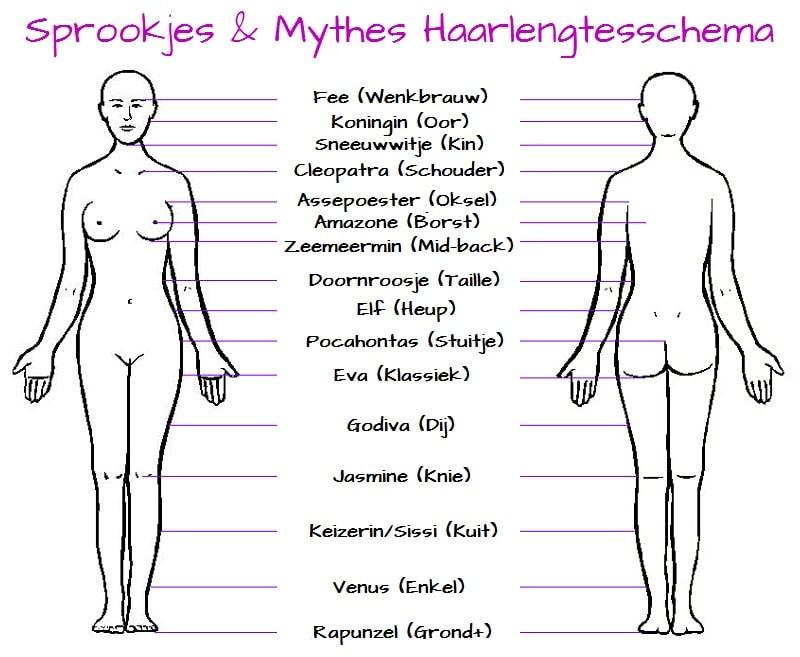 Sprookjes & Mythes Haarlengteschema