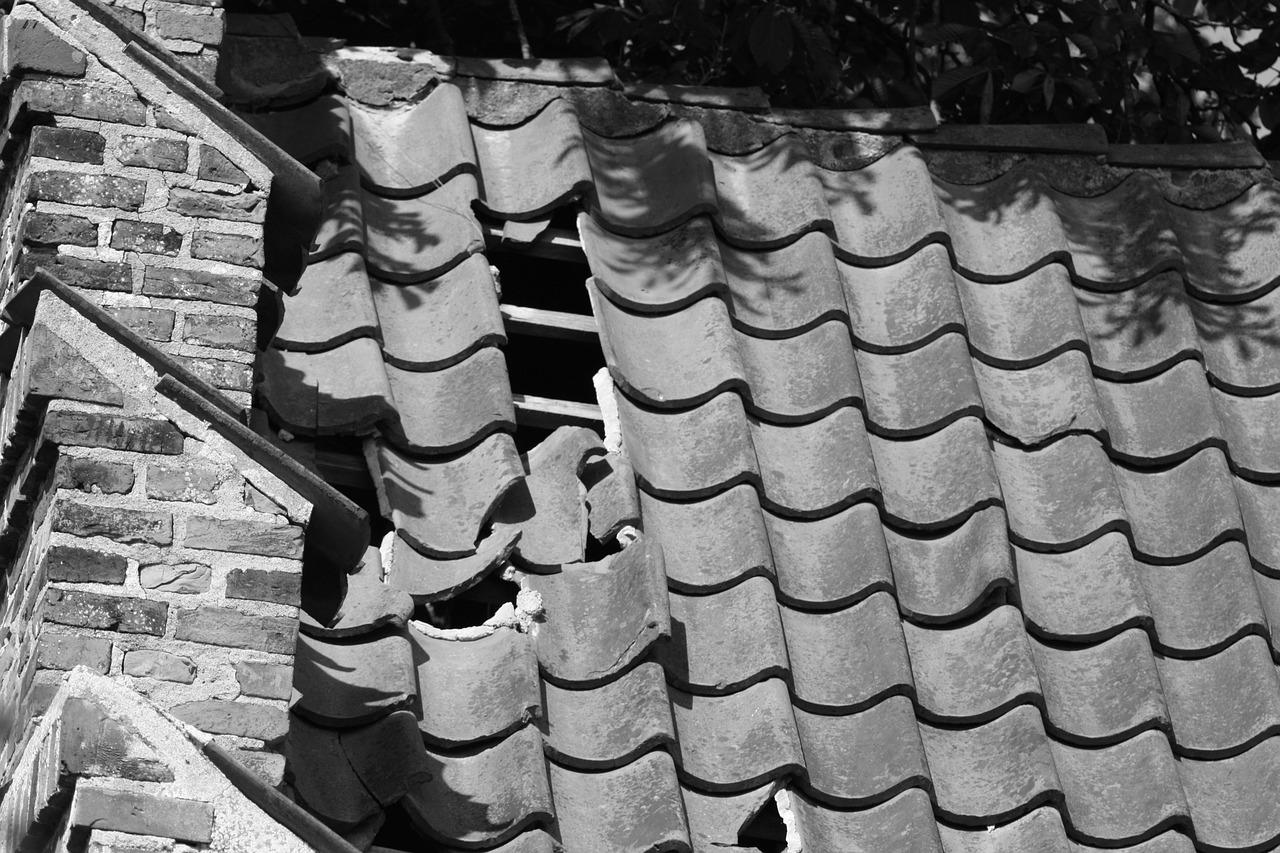 Haarschubben zijn net dakpannen