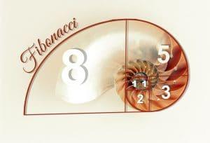 Fibonacci reeks gulden snede haarlengte