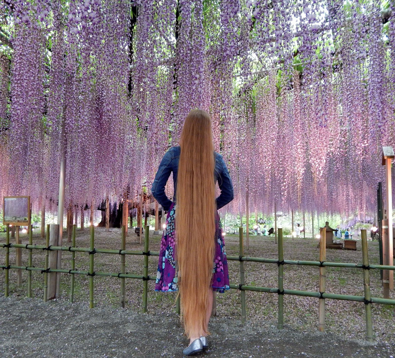 Rapunzel Andrea super lang haar